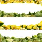 food_13.jpg