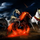 horse_30
